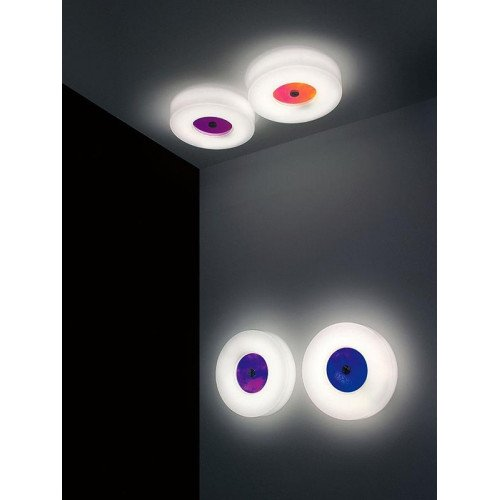 Corona Martinelli Luce Wall and Ceiling Light